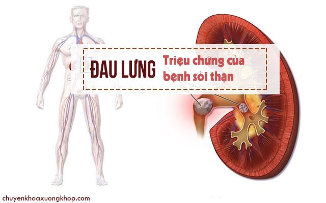 đau lưng báo hiệu nhiều bệnh lý