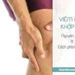 Những nguyên nhân gây viêm đau khớp gối và cách phòng ngừa
