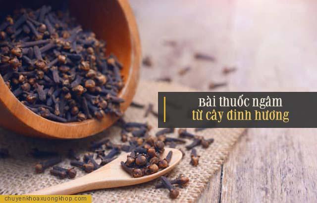 Bài thuốc ngâm từ cây đinh hương điều trị đau nhức xương khớp