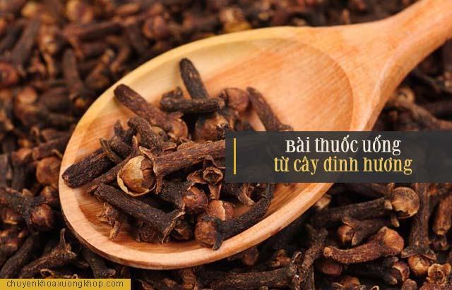 Bài thuốc uống từ cây đinh hương điều trị đau nhức xương khớp