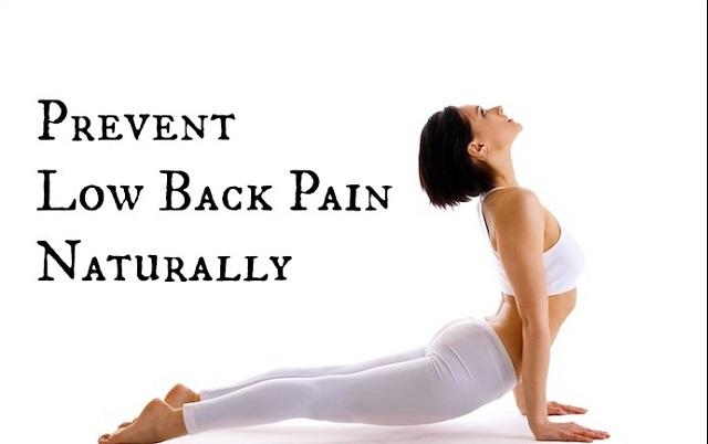 Phòng ngừa bệnh đau lưng dưới