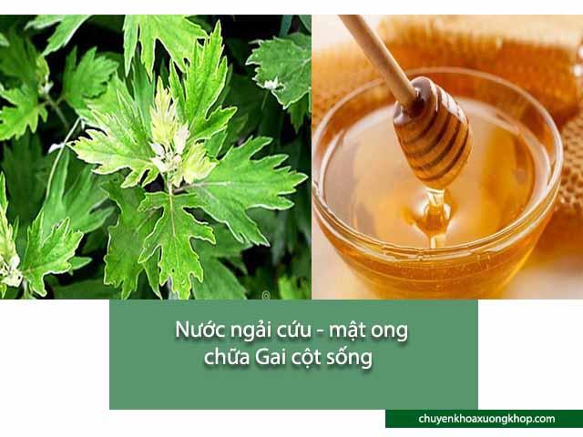 ngải cứu và mật ong chữa gai cột sống