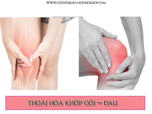 đau là một triệu chứng của thoái hóa khớp gối