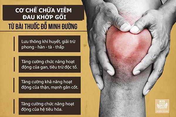 Hiệu quả bài thuốc chữa đau khớp gối của Đỗ Minh Đường mang lại cho người bệnh