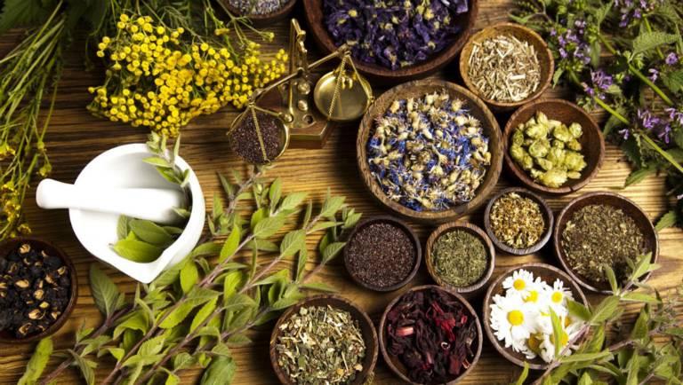Sử dụng các cây thuốc Nam chữa bệnh là phương pháp rất an toàn đối với sức khỏe